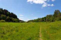 The path through the meadow Stock Photos