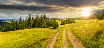 Path through meadow to forest in mountain at sunset Royalty Free Stock Image