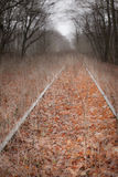 Path of Melancholia. Abandoned railroad track through a dark autumn forest Royalty Free Stock Photos