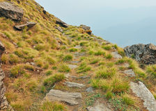 Path in mountain Stock Photography