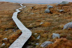 Path on mountain in ireland. Wood board path on mountain in ireland Royalty Free Stock Photography