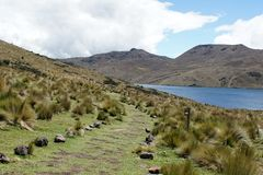 Path beside a mountain lake in the Antisana Ecological Reserve, Ecuador Stock Images