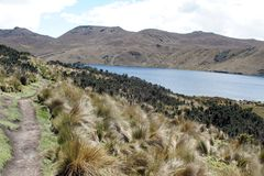 Path beside a mountain lake in the Antisana Ecological Reserve, Ecuador Stock Photos