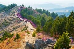 The path on the mountain ridge Stock Photos