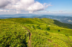 Path through the mountain ridge in summer. Beautiful summer landscape in mountains. fine weather with blue sky and some clouds. gorgeous travel background with Stock Photos