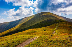 Path through the mountain ridge in summer Stock Images
