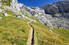 Path on the mountain slope Stock Photo