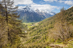Path in mountain valley in spring time Stock Photography