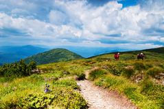 Path in mountains Stock Photography