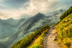 Path in mountains Stock Photos