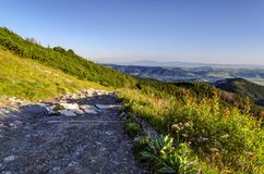Path in mountains. A pleasant mountain trail running down the valley in Tatras stock photo