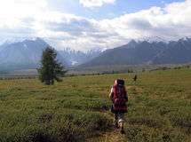 Path in the mountains. On the way to the river valley Maashey, Altai, Siberia, Russia Stock Photography