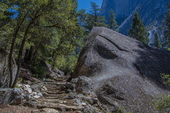 Path in a natural train directed behind stones in a forest Royalty Free Stock Images