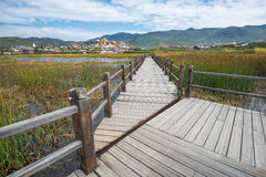 Path through nature landscape in Shangrila. (Zhongdian) - China Stock Photo