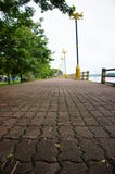 Path in nature park. In thailand Royalty Free Stock Image