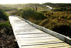 Path through the nature reserv. Path running through the nature reserve in South Africa by the ocean stock images