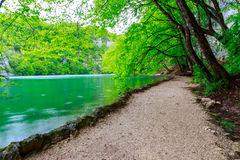 Path near a forest lake in Plitvice Lakes National Park Royalty Free Stock Images