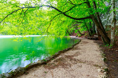 Path near a forest lake in Plitvice Lakes National Park Stock Image