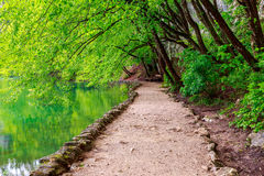 Path near a forest lake in Plitvice Lakes National Park Royalty Free Stock Image