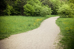 Path near the forest Royalty Free Stock Photo