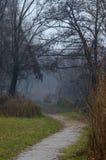 A path near a lake Royalty Free Stock Image