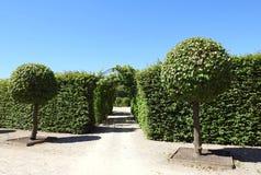 Beautiful Rundale palace park, Latvia Royalty Free Stock Images