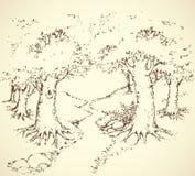 Path among oak groves. Vector drawing Stock Photo
