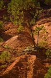 The path of the ochre near Roussillon,France Stock Image