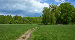 Path through old park. Landscape. Path through old park. Cloudy sky. Spring time landscape stock image