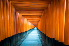 Path of oranges japanese gates in a temple in Kyoto Royalty Free Stock Photos
