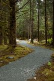 Path Enroute Mendenhall Glacier Royalty Free Stock Images