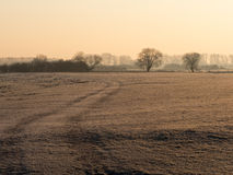Path over a frozen field Stock Photography