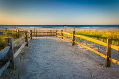 Path over sand dunes to the Atlantic Ocean at sunrise in Ventnor Stock Image