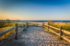 Path over sand dunes to the Atlantic Ocean at sunrise in Ventnor Royalty Free Stock Photography