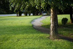 Path in the park Royalty Free Stock Photography