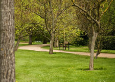 Path in a park. Bending path in a park with a bench, lined with trees full of leaves. Spring scene. Shallow depth of field Royalty Free Stock Photos
