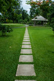 Path in Park Stock Photography
