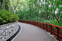 Path in Park 2672. Path with red handrail in Park around green plant Royalty Free Stock Image