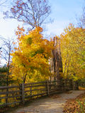 Path in Park. Path / trail in the park in fall lined by wooden fence royalty free stock images