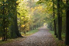 Path in the park. Walking in the park on a sunny Octoberday Stock Image