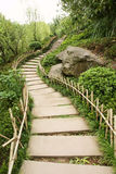 Path in park with bamboo fence Royalty Free Stock Photos
