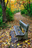 Path And Park Bench. A Walking Path And Park Bench Amid The Brilliant Colors Of A Rainy Autumn Day, Sharon Woods, Southwestern Ohio Stock Photo