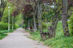 Path in a park and benches Royalty Free Stock Photos