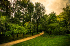 Path in a park Stock Image