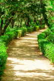 Path in the Park, Catalonia, Spain. Royalty Free Stock Photo
