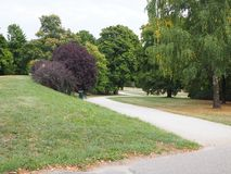 Path in a park, empty place royalty free stock photography