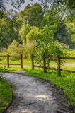 Path in the Park. And the fence Stock Image