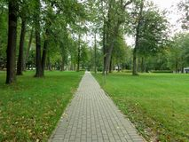 Path in the Park in the fresh air royalty free stock photos