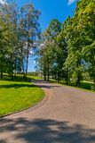 A path in the park with green lawns on the sides and growing trees with a blue bright sky above them. A good place in a stock images