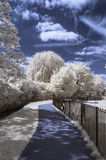 A path through the park - Infrared landscape Royalty Free Stock Image